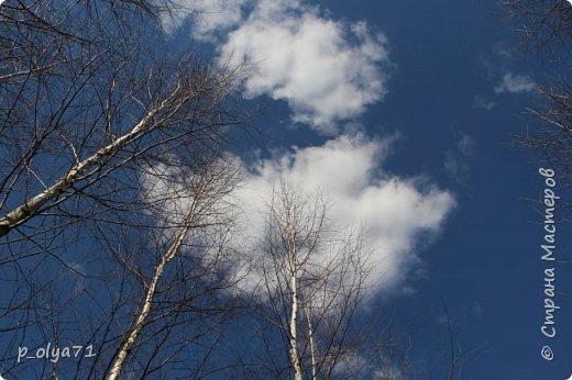 ЗДРАВСТВУЙТЕ!!!! Очень рада всех видеть!!!  Весна пришла,погода ооочень переменчивая,но на природу это не влияет - она всегда прекрасна:и в пасмурные дни,и солнечные! Каждый день любуюсь природой и хочу поделиться с вами её красотой. фото 1