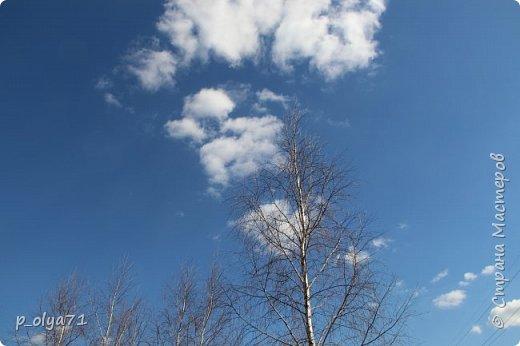 ЗДРАВСТВУЙТЕ!!!! Очень рада всех видеть!!!  Весна пришла,погода ооочень переменчивая,но на природу это не влияет - она всегда прекрасна:и в пасмурные дни,и солнечные! Каждый день любуюсь природой и хочу поделиться с вами её красотой. фото 3