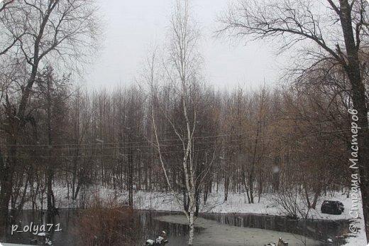 ЗДРАВСТВУЙТЕ!!!! Очень рада всех видеть!!!  Весна пришла,погода ооочень переменчивая,но на природу это не влияет - она всегда прекрасна:и в пасмурные дни,и солнечные! Каждый день любуюсь природой и хочу поделиться с вами её красотой. фото 8