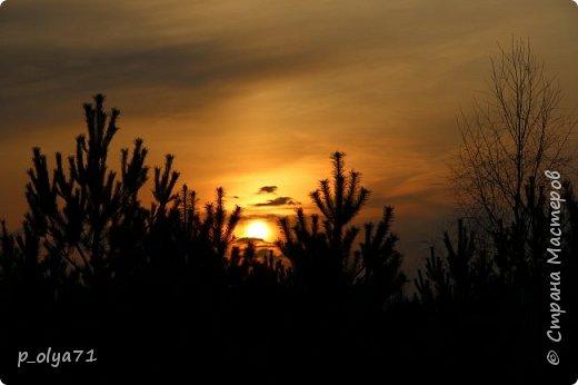 ЗДРАВСТВУЙТЕ!!!! Очень рада всех видеть!!!  Весна пришла,погода ооочень переменчивая,но на природу это не влияет - она всегда прекрасна:и в пасмурные дни,и солнечные! Каждый день любуюсь природой и хочу поделиться с вами её красотой. фото 31
