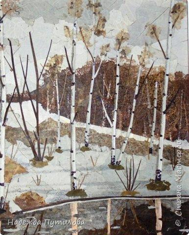 В работе использовала листья тополя серебристого, осины, клена, бересту, банан. фото 2