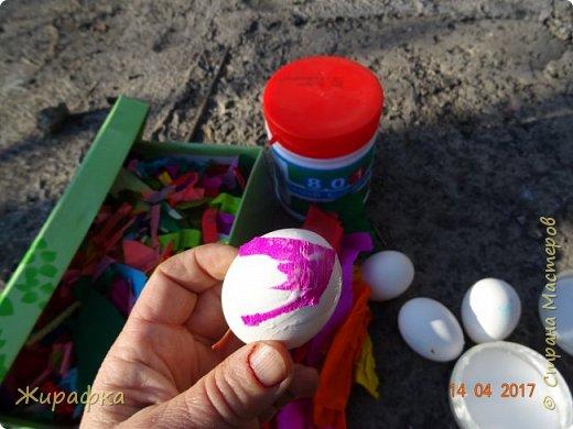 Вот такие яйца я предлагаю вашему вниманию. фото 5