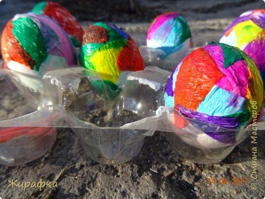 Вот такие яйца я предлагаю вашему вниманию. фото 8