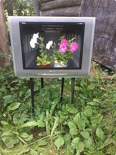 Был на даче старый телевизор, давно ничего не показывал, а теперь в нем всегда прграмма про букеты фото 4