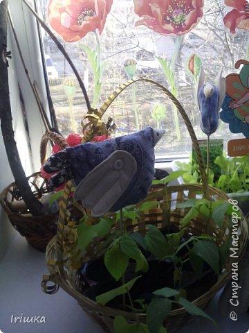 Вот такие птички пошились у меня в детский сад для огородика на подоконнике. фото 8