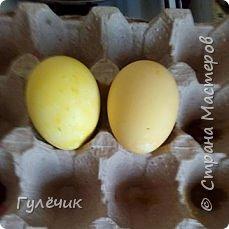 Итак , в приготовленный раствор , в холодный, погружаем наши сырые яички фото 3