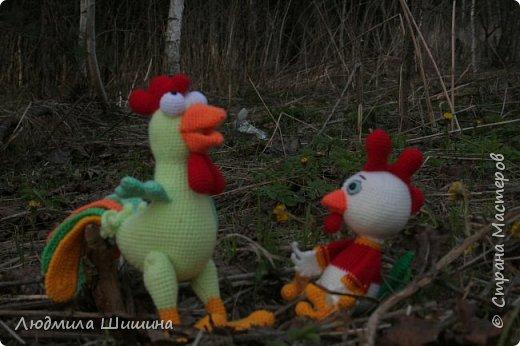 Здравствуйте! Вот и новые зверята-ребята, скорее петушки! фото 1