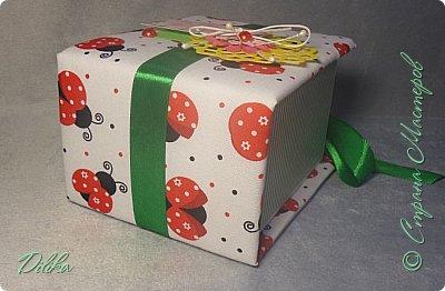 коробочка фото 3