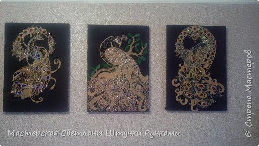 Наконец я закончила три картины да бы украсить стену на которую я очень долго заглядывалась.правда теперь я отказалась от стёкла мне так больше нравится исчезли блики и стал заметен обьем . фото 2