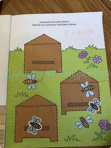 Доброго времени суток! Ещё одной темой наших с сынулей игровых занятий стали пчёлки.  Что же мы про них узнавали? А вот:  Пчела - это удивительное насекомое, которое дает человеку очень вкусный и полезный продукт - мед. Тело пчелы имеет красивую, полосатую желто-черную окраску. У пчёл 5глаз. Питаются пчелы пыльцой и нектаром, получая из них и энергию, и питательные вещества.  Пчелки помогают не только людям, но и растениям. На своих лапках они переносят пыльцу с одного цветка на другой, опыляя их. Благодаря чему, растения и деревья дают плоды и семена.  фото 10