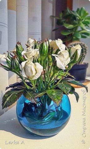 """Материал: холодный фарфор,подкрашены""""маслом"""", в вазе и на листьях -имитатор воды фото 3"""