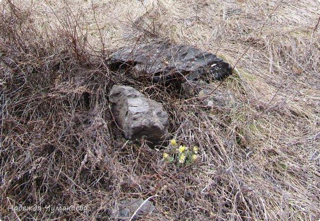 Пару недель назад мы снова решили съездить за Чемал. Катунская долина - живая иллюстрация алтайских легенд, ведь если внимательно всматриваться в горы, можно найти множество лиц. По легенде после потопа земля не смогла выдержать тяжести алтайских богатырей и они превратились в горы.   фото 18