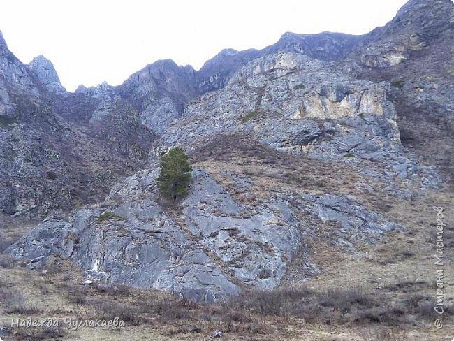 Пару недель назад мы снова решили съездить за Чемал. Катунская долина - живая иллюстрация алтайских легенд, ведь если внимательно всматриваться в горы, можно найти множество лиц. По легенде после потопа земля не смогла выдержать тяжести алтайских богатырей и они превратились в горы.   фото 24