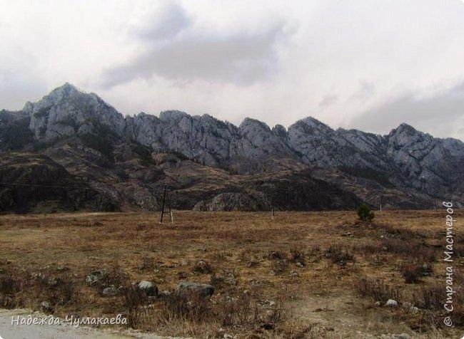 Пару недель назад мы снова решили съездить за Чемал. Катунская долина - живая иллюстрация алтайских легенд, ведь если внимательно всматриваться в горы, можно найти множество лиц. По легенде после потопа земля не смогла выдержать тяжести алтайских богатырей и они превратились в горы.   фото 32