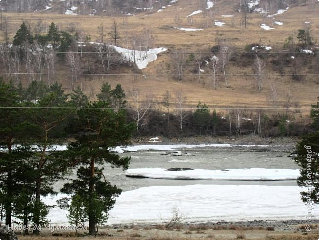 Пару недель назад мы снова решили съездить за Чемал. Катунская долина - живая иллюстрация алтайских легенд, ведь если внимательно всматриваться в горы, можно найти множество лиц. По легенде после потопа земля не смогла выдержать тяжести алтайских богатырей и они превратились в горы.   фото 5