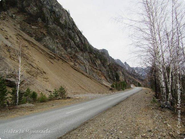 Пару недель назад мы снова решили съездить за Чемал. Катунская долина - живая иллюстрация алтайских легенд, ведь если внимательно всматриваться в горы, можно найти множество лиц. По легенде после потопа земля не смогла выдержать тяжести алтайских богатырей и они превратились в горы.   фото 8