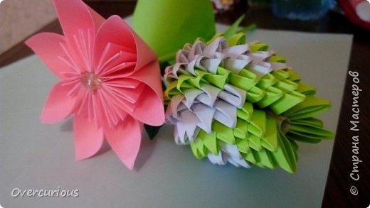 Тюльпан и ромашка в вазе. фото 3