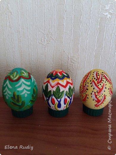 Всех с праздником! !! Покраска вареных яиц пищевыми красителями.  Роспись- гуашь. На белок краска не прошла.  Яйцебой прошел успешно. Победа за белым расписным. фото 2