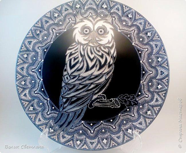 Здравствуйте, дорогие мастера! Представляю вашему вниманию свои новые работы))) Роспись выполнена на керамических матовых тарелках. С обратной стороны есть подвес. Тарелка может стоять на полке или висеть на стене. Слон. Диаметр тарелки 26см. фото 3