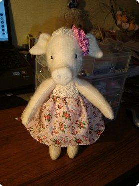 Добрый вечер!!! Раешила я вам показать немного своих новых работ... а именно кукол и игрушки... Такую куклу-снежку шила первый раз... Первая моя куколка с шариком в голове... http://stranamasterov.ru/node/1085481?t=1022 ... здесь голова набивается без шарика.... скажу трудновато мне было сделать плотную и круглую голову...  фото 11