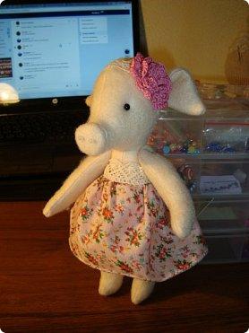 Добрый вечер!!! Раешила я вам показать немного своих новых работ... а именно кукол и игрушки... Такую куклу-снежку шила первый раз... Первая моя куколка с шариком в голове... http://stranamasterov.ru/node/1085481?t=1022 ... здесь голова набивается без шарика.... скажу трудновато мне было сделать плотную и круглую голову...  фото 12