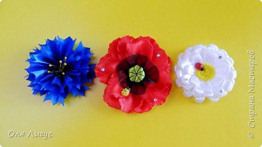 Для создания ободка Вам понадобятся: 1. Основа - ободок 2.Атласная лента 4 см - красная 3.Атласная лента 2.5 см - синяя 4.Атласная лента 1 см - белая 5.Атласная лента 0.6 см - красная и зелёная 6.Тычинки,органза,клей фото 2
