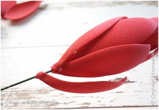А вы знали что имбирь цветет? Да, да, именно тот имбирь который мы употребляем в пищу. Вот такими цветами!  Представляю вам небольшой мастер класс по их изготовлению.  фото 11