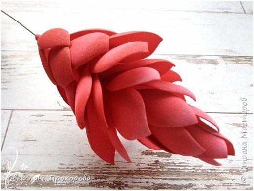 А вы знали что имбирь цветет? Да, да, именно тот имбирь который мы употребляем в пищу. Вот такими цветами!  Представляю вам небольшой мастер класс по их изготовлению.  фото 18