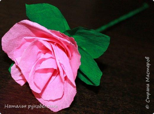 Добрый день, Страна мастеров! Дочка, ей 6 лет, сделала вот такую розочку из гофрированной бумаги.  фото 4