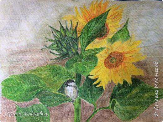 Рисунок цветными карандашами. фото 1