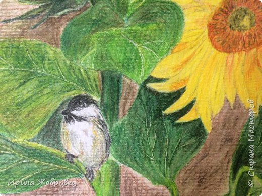Рисунок цветными карандашами. фото 2