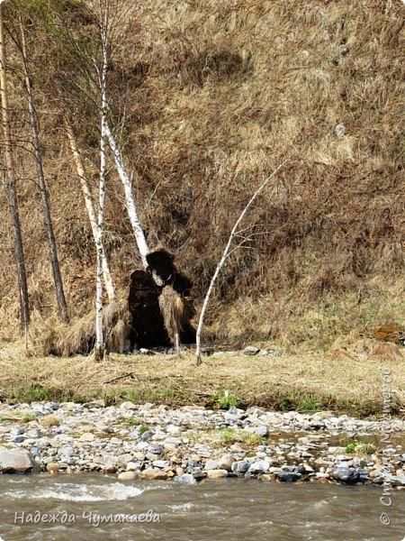 12 апреля устроили пикник на берегу реки Куюм.  КуЮм. фото 8