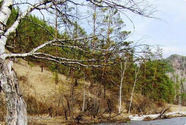 12 апреля устроили пикник на берегу реки Куюм.  КуЮм. фото 16