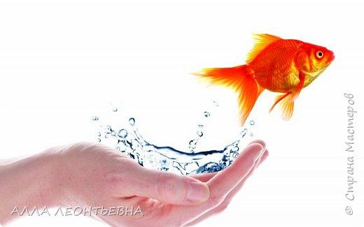 Очень разболелась -простыла...а оставить цемент  и сидеть без дела не могу...-вот и родилась  маленькая золотая рыбка !  Осторожно с желаниями!!!! фото 5