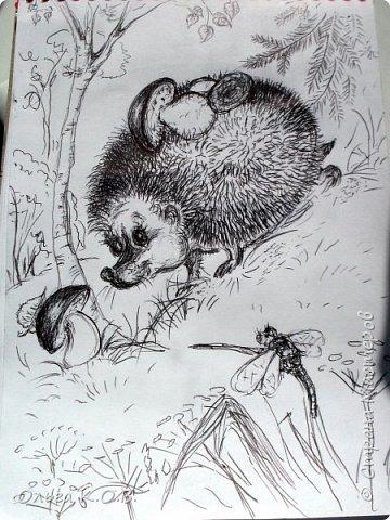Рисунки в транспорте и мишка фото 5