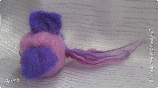 Всем большущий приветик!!! Показываю вам свою новую игрушку Рыбка-петушок. Вот он такой замечательный и яркий! Игрушку сделала на кружке валяния в школе. А цвет такой выбрала, потому что это мои любимые сочетания оттенков. По гороскопу я рыбка и люблю рыбок :-) фото 5