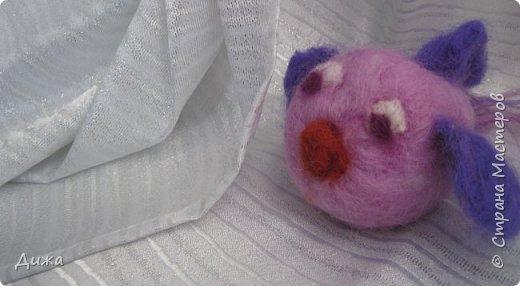 Всем большущий приветик!!! Показываю вам свою новую игрушку Рыбка-петушок. Вот он такой замечательный и яркий! Игрушку сделала на кружке валяния в школе. А цвет такой выбрала, потому что это мои любимые сочетания оттенков. По гороскопу я рыбка и люблю рыбок :-) фото 8