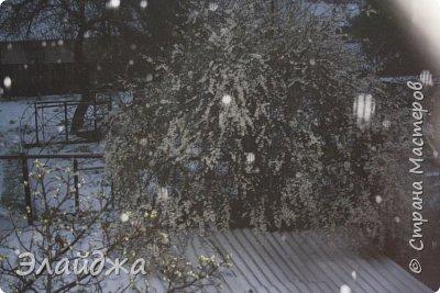 Добрый День стана! 3 день у нас идет снегопад, ревет ветер и заносит все вокруг!! А деревья все то в цвету!  В школах объявили каникулы до понедельника.  Много  городков области осталось без света, у нас не было  тоже ни света на интернета, хорошо что к вечеру починили, много в городе упало деревьев,не выдержав веса снега , поломало столбы, порвало провода,  на крыши машин и домов падали деревья. Вот вам пишу а буря продолжается, уже 40 см снега выпало,  На фото цветущие деревья покрываются снегом...Жаль что не будет в этом году ни ягод ни фруктов... по прогнозам   до конца недели нелетная погода, снег и ветер с морозом.....Вот кто думал что после 20 градусов тепла на Пасху , на следующий день начнется   такое????? фото 2