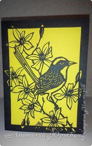 """Всем добрый день! Вашему вниманию новая открытка.  - Разноцветный расписной малюр (лат. Malurus lamberti) — птица семейства малюровых, отряд- воробьинообразные, обитающая на большей части Австралии.  - Эскиз выполнен по цветному рисунку австралийской художницы Deidre Hunt. Изменён и доработан под """"вырезалку"""". Размер - как обычно 12х16см:)) фото 5"""