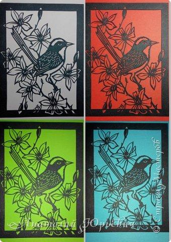 """Всем добрый день! Вашему вниманию новая открытка.  - Разноцветный расписной малюр (лат. Malurus lamberti) — птица семейства малюровых, отряд- воробьинообразные, обитающая на большей части Австралии.  - Эскиз выполнен по цветному рисунку австралийской художницы Deidre Hunt. Изменён и доработан под """"вырезалку"""". Размер - как обычно 12х16см:)) фото 4"""