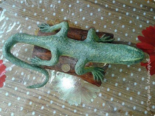 еще одна ящерка фото 2