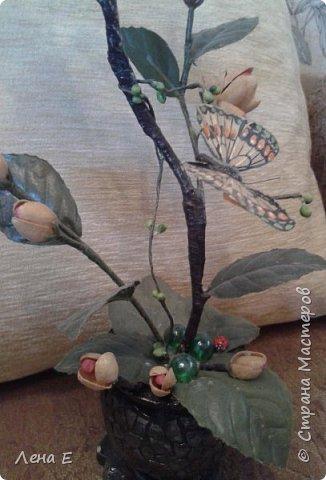 цветочки фисташки, листики искусственные, горшочек из гипса фото 2