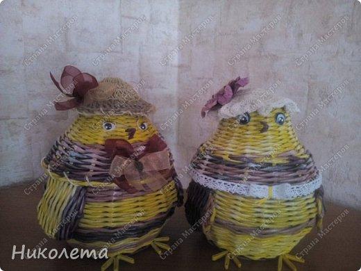 курятник пополняется (плетение) фото 2