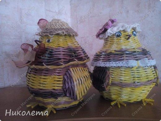 курятник пополняется (плетение) фото 7