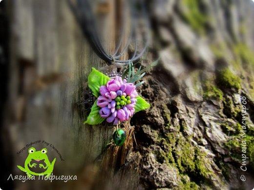 Где-то далеко-далеко в дремучем лесу, где растут могучие дубы и много топких болот - выросли волшебные грибочки. фото 7
