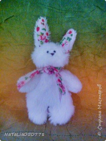 Зайчаточки. фото 2