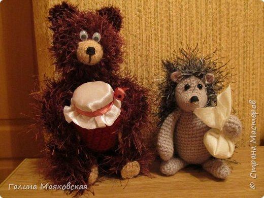 Однажды вечером ежик шел в гости к медвежонку смотреть вместе на звезды и пить чай с малиновым вареньем... И заблудился. Но встреча, как видите, все-таки состоялась! фото 1