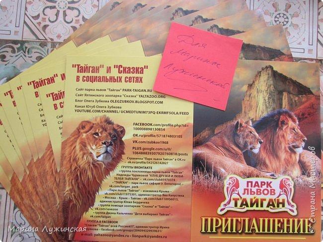 """31 марта, рано утром мне по электронной почте пришло письмо от директора нашего крымского Парка Львов """"Тайган""""  , в котором сообщалось, что мне и всей моей детворе будут переданы 10 бесплатных пригласительных билетов. Я не могу передать и описать то, что происходило в тот момент со всеми нами.... А потом ещё выяснилось, что по каждому билету  могут приехать два человека...  Вот так вот...Совсем незнакомый человек подарил всем  нам сказку...  Олег Алексеевич, не перестану Вас благодарить! Спасибо Вам за Вашу доброту! фото 1"""