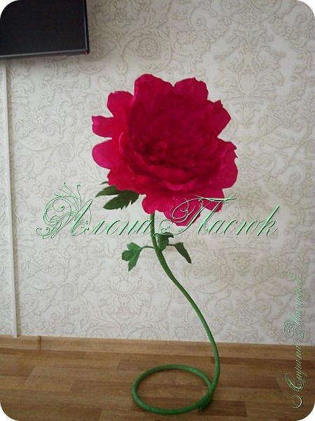 Ростовой цветок (1м20см высота )