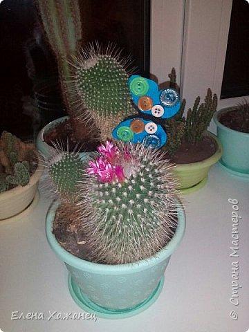 В цветочный горшочек (вторая жизнь пуговиц) фото 3